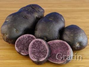 Низкокалорийный «свекольный» картофель Чудесник – специально для диеты!