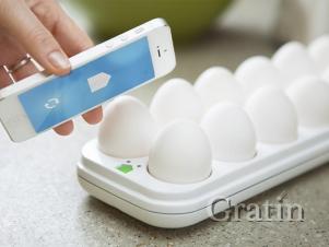 Интеллектуальный контейнер для яиц